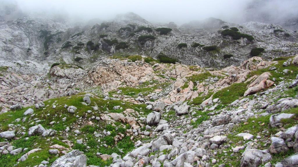 steinernes-meer-uli-auf-den-berg