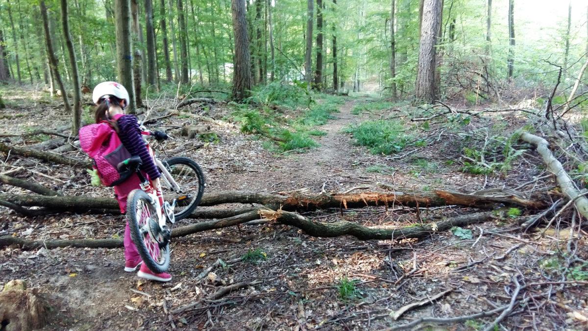 outdoorkid-mountainbike-mit-kindern
