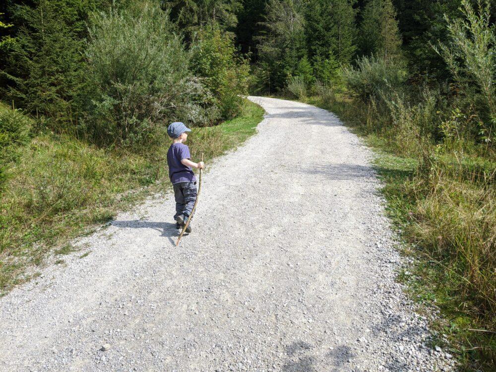 Kleinkind wandert auf Wanderweg
